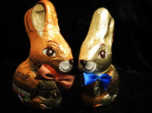Photo of chocolate Easter bunnies
