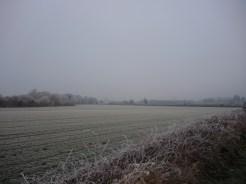 frosty-field-3