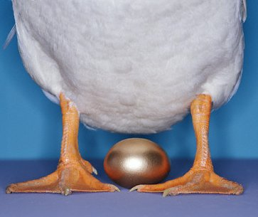 MORAL MONDAY: THE GOOSE WITH THE GOLDEN EGGS. | Ramblings ... Golden Goose Eggs