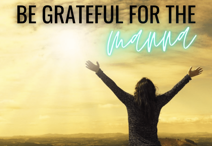 Be grateful for the manna