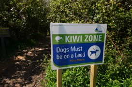Our first experience with the Kiwi Zone