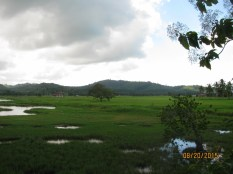 Langkawi Landscape_4