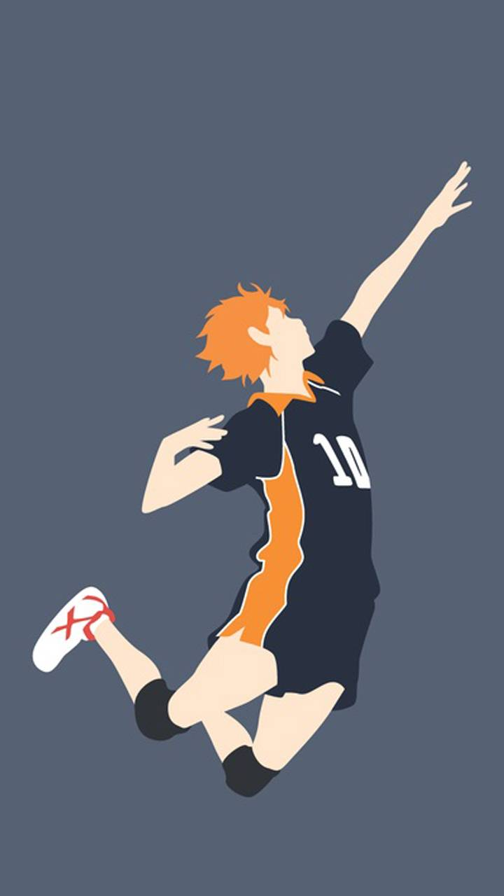 Haikyuu fly wallpaper