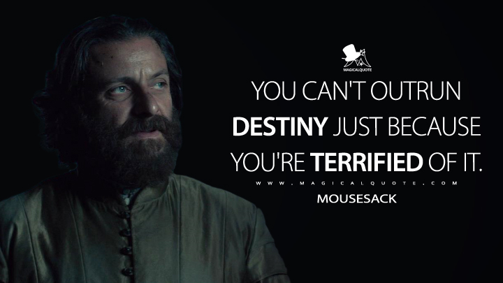 The witcher quotes about destiny
