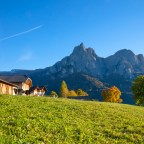 Alto Adige, dodici cartoline autunnali dai masi Gallo Rosso