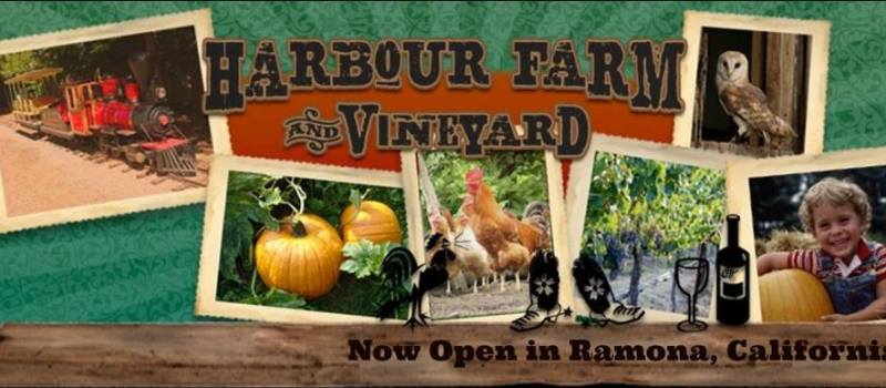 Harbor Farms & Vineyard