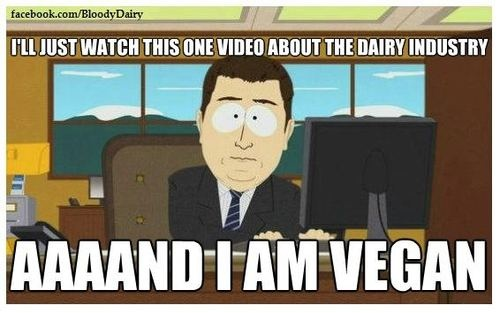 Image result for vegetarian meme