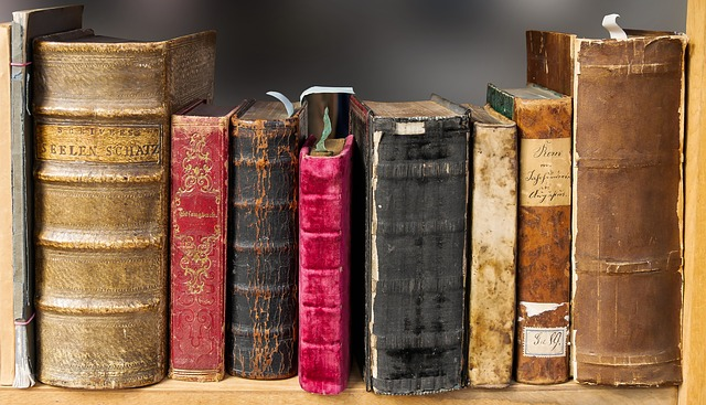 Bookcase of old books