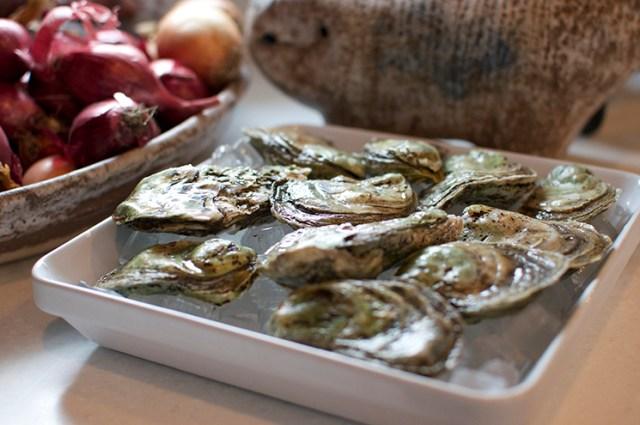 pretty oysters