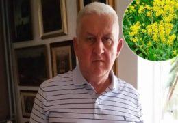 Hercegovački travar Sadiković tvrdi da postoje bolje trave protiv koronavirusa od slatkog pelina: Bojadisarski vrbovnik neda virusu ući u stanice!