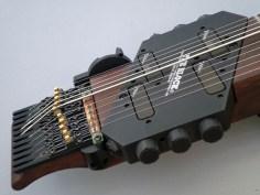 10弦 Chapman Stick、ローズウッド