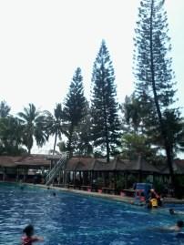 Pulau Situ Gintung 2015