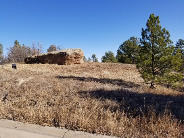 Semi-Custom Home for Sale on Lost Canyon Ranch Rd - Ranch Living - Castle Rock, CO