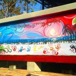 Nicole's Painting on Volunteer House Extension