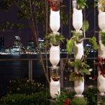 Vertical drip garden and art piece
