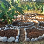 "Making an Herb Garden – ""Rockin' It"" – (Part III)"