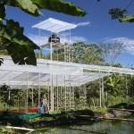 Hydroponics Costa Rica
