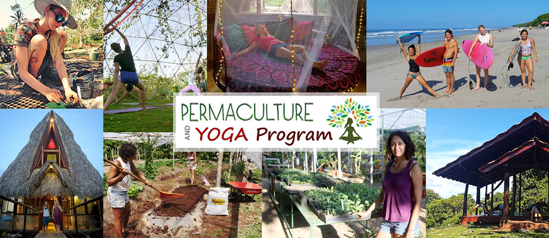 Permaculture, Yoga Retreat and Surf Camp