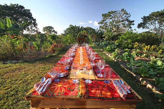 Farm to Table Dinner 5 - 1000px