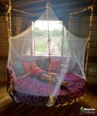 Hanging Round Nest Bed