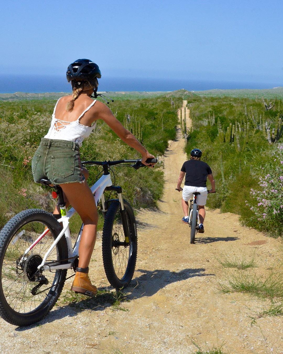 best activities in Los Cabos Mexico