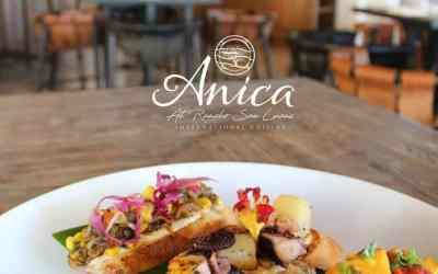 Grand Solmar at Rancho San Lucas Highlights Anica
