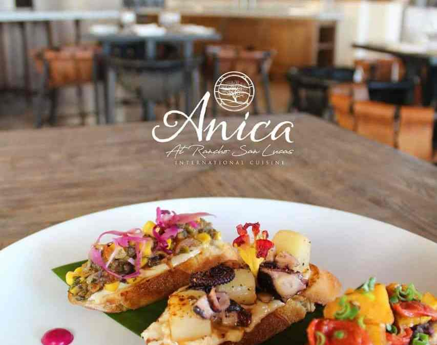 Grand Solmar at Rancho San Lucas Highlights Anica (1)