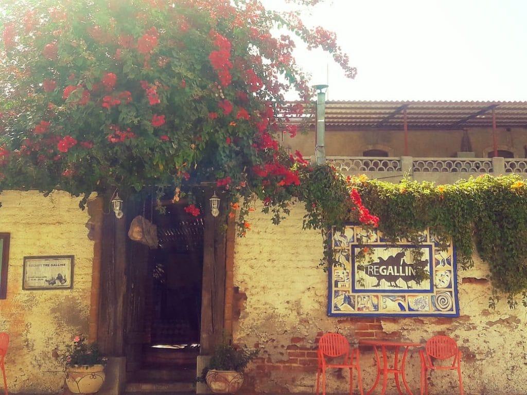 Rancho San Lucas at Todos Santos