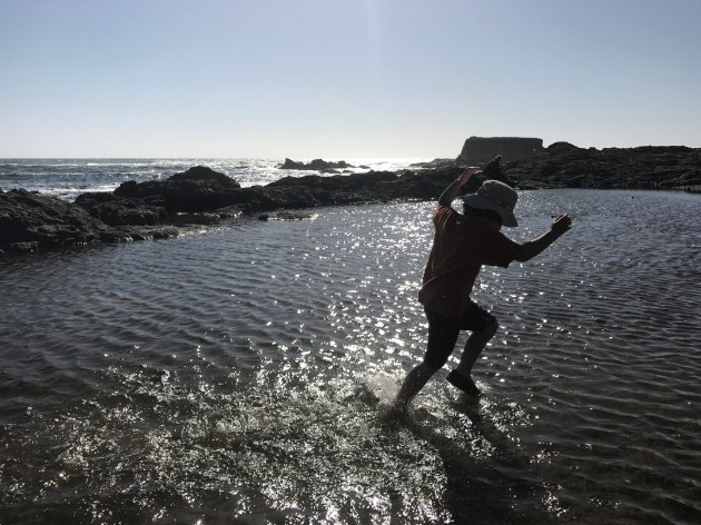 Xander running across the tidepool