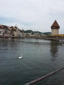 Pont médiéval sur la Reuss à Lucerne