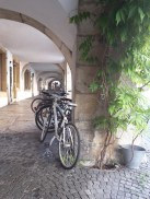 ruelle du vieux Bienne