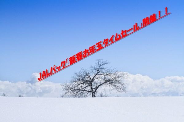 JALパック「新春お年玉タイムセール」