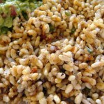 Escamol: the ants caviar of Mexico