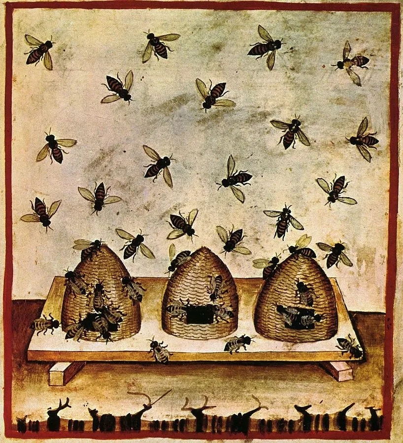 The Folklore of Bees