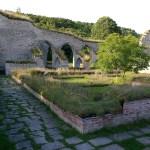 Alvastra Abbey: the first Cistercian settlement in Sweden