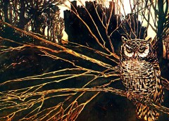 The owl of Cwm Cowlyd and the oldest animals in the world