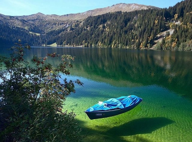 Rotomairewhenua: the clearest body of fresh water known to man