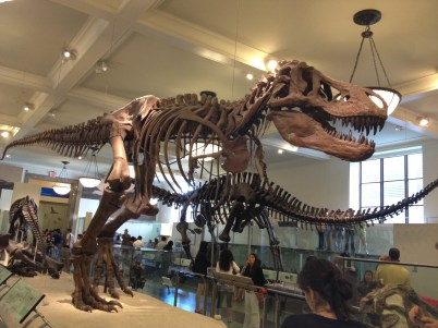 The American Museum of Natural History.