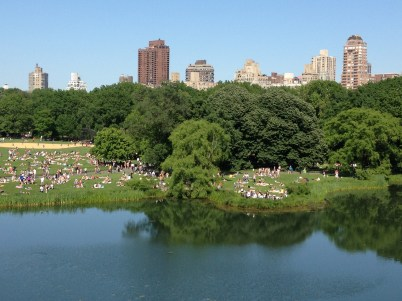 More Central Park. Lots of sunbathers!