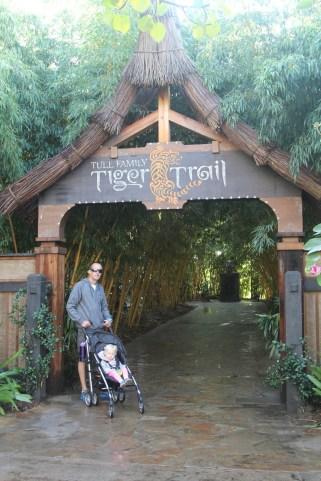 Tiger Trail