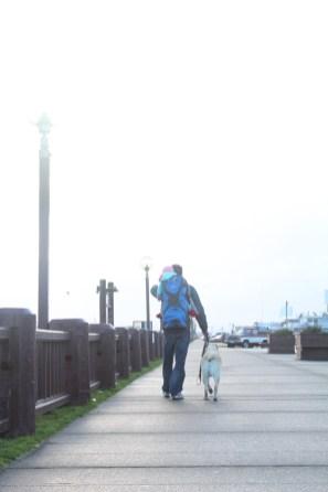 Walk in Westport