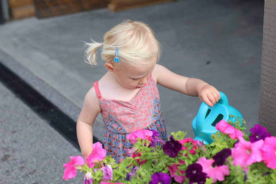 Watering moms flowers