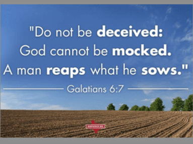bibleverse-reap-what-you-sow