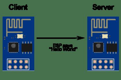 esp client vs server