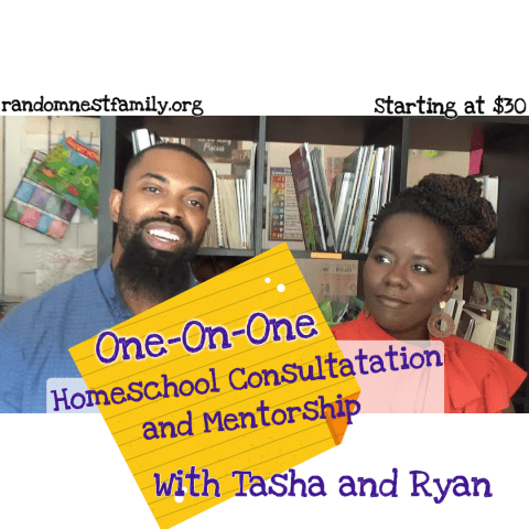 Homeschool consultation with Randomnestfamily.org