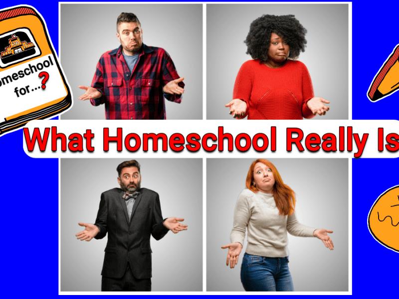 Randomnestfamily.org, what homeschool really is