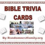 bible trivia cards image @randomnestfamily.org