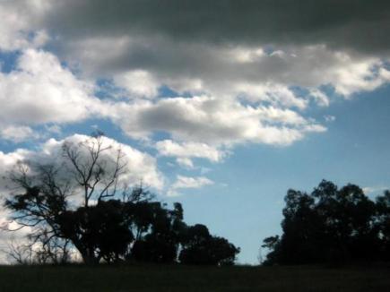 the darkening clouds