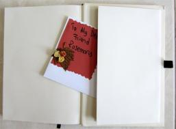 I just adore the 'back pocket' in diaries and sketch books and this has it all