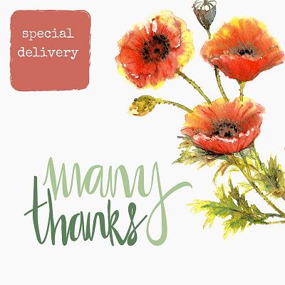 many-thanks-randomstoryteller-stationery-with-orange-red-poppies